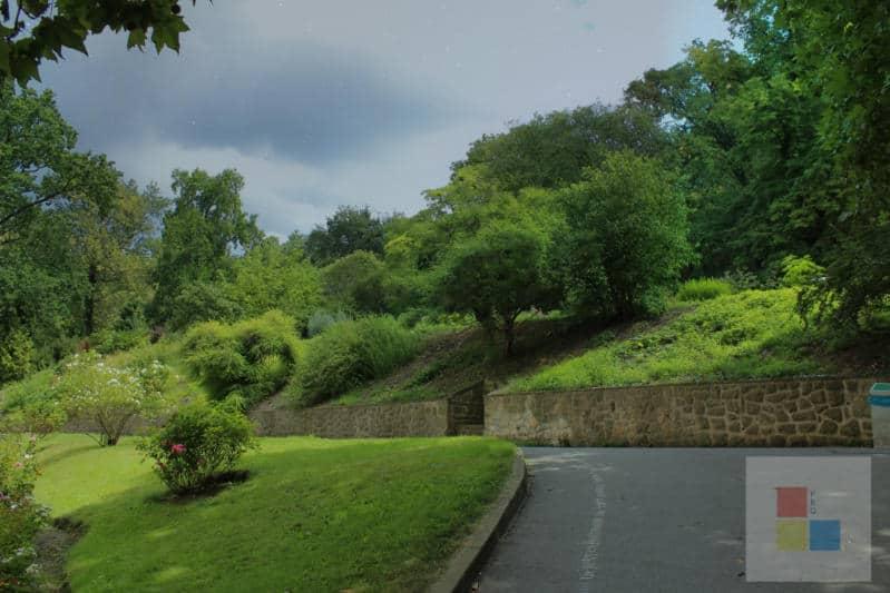Botanischer Garten Stadt 11