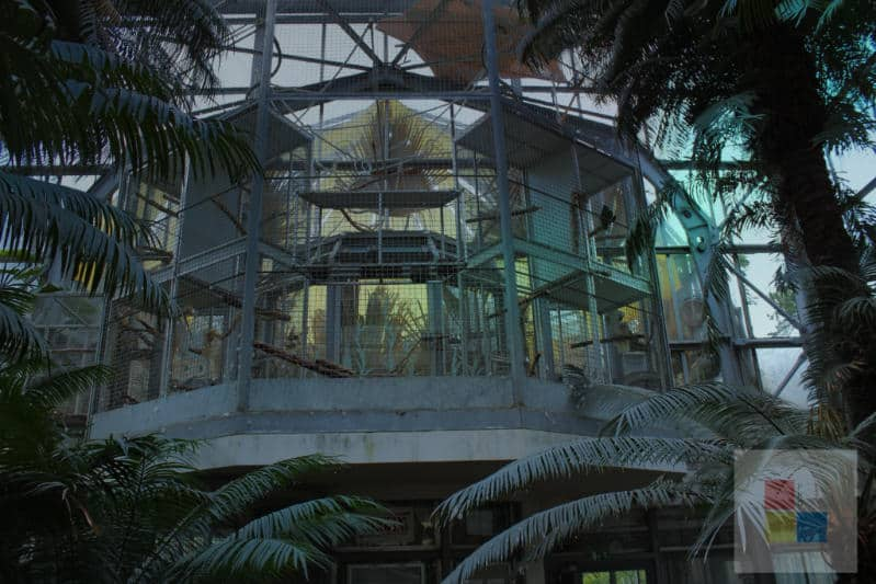 Botanischer Garten Stadt 4