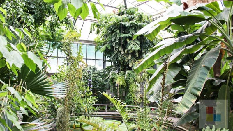 Botanischer Garten Stadt
