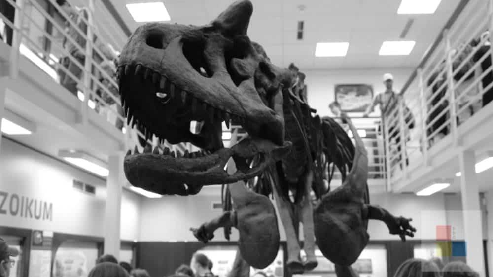 Ein Saurier im Naturkundemuseum Prag