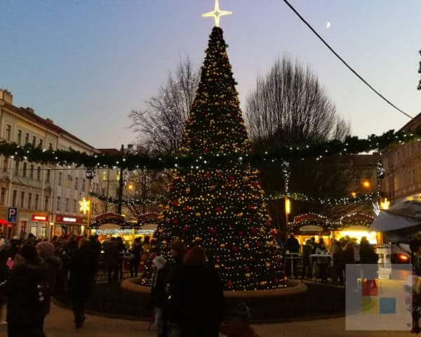 Weihnachtsmarkt auf dem Platz I. P. Pavlova in Prag